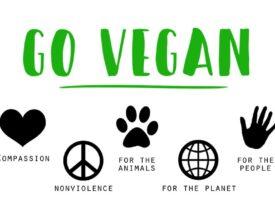 Veganos contra el maltrato animal